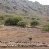 Quintas Do Campo 10